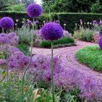 De natuurtuin voorjaar